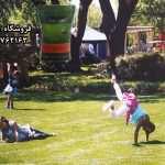 چمن گرین استار بذر چمن گرین استار بیشتر در طراحی پارک های عمومی ، فضای سبز و زمین های بازی مورد استفاده قرار میگیرد . البته چمن به جهت پرنمودن جاهای خالی ، باغچه های منازل هم در نظر گرفته می شود. تلفن تماس : 09199762163 -09120578916 ارسال به سراسر کشور فیلم بذر چمن : http://www.aparat.com/v/45tuV