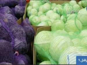 زمینه های کاربرد کیسه توری راشل: بسته بندی محصولات کشاورزی همچون: سیب زمینی، پیاز، مرکبات، کلم، انار، هویج ، سیر و ... مزایای استفاده از کیسه توری راشل: - سهولت بسته بندی و تهویه هوا درون کیسه - جلوگیری از فاسد شدن محصول - استحکام و مقاومت بالا - قیمت تمام شده مناسب برای کشاورزان - زیبایی و تنوع رنگ (زرد، قرمز، پرتقالی، سبز، بنفش) - داشتن نخ سرکیسه بر روی دهانه کیسه ها به منظور بسته شدن دهانه کیسه به شکل مناسب مشخصات کیسه راشل: ابعاد کیسه (بر حسب سانتی متر) و ظرفیت (بر حسب کیلوگرم) 31x50: 7kg 37x50: 10kg 37x65: 15kg 45x65: 20kg 50x80: 30kg 60x80: 45kg تلفن تماس : 09199762163 - 09120578916 ارسال به سراسر کشور توری راشل ، کیسه راشل ، توری بسته بندی ، کیسه توری تزیینی ، توری پیاز ، توری پیازی ، قیمت توری پیازی ، تولید کننده توری پلاستیکی ، توری شید راشل ، قیمت توری شید ، قیمت توری شید گلخانه ، قیمت توری سایبان شید ، توری سایه انداز ، قیمت شید گلخانه ، قیمت توری گلخانه ای ، قیمت توری سایه انداز ، قیمت توری سایبان گلخانه ای ، کیسه توری بسته بندی ، کیسه راشل ، کیسه توری تزیینی ، توری پیازی ، قیمت توری سیب زمینی ، تولید کننده توری پلاستیکی ، توری بسته بندی - توری شید بسته بندی ، توری شید ، قیمت توری شید گلخانه ، قیمت توری سایبان شید ، قیمت شید گلخانه ، شید سایه انداز،توری سایبان گلخانه در اصفهان